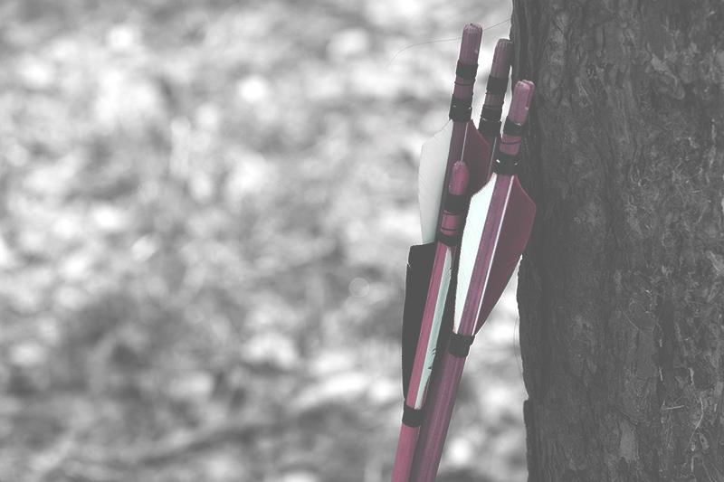 Jousen nuolia nojaamassa puuta vasten